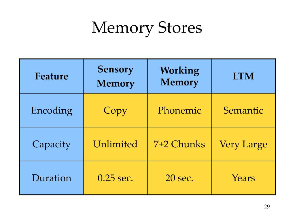Memory Stores