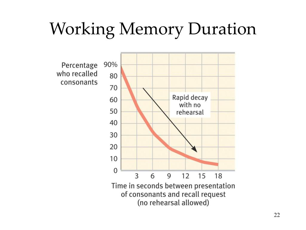 Working Memory Duration