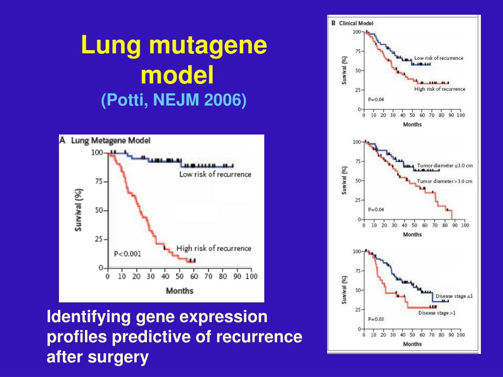 Lung mutagene