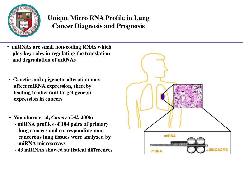 Unique Micro RNA Profile in Lung