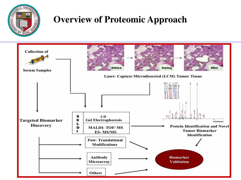 Overview of Proteomic Approach