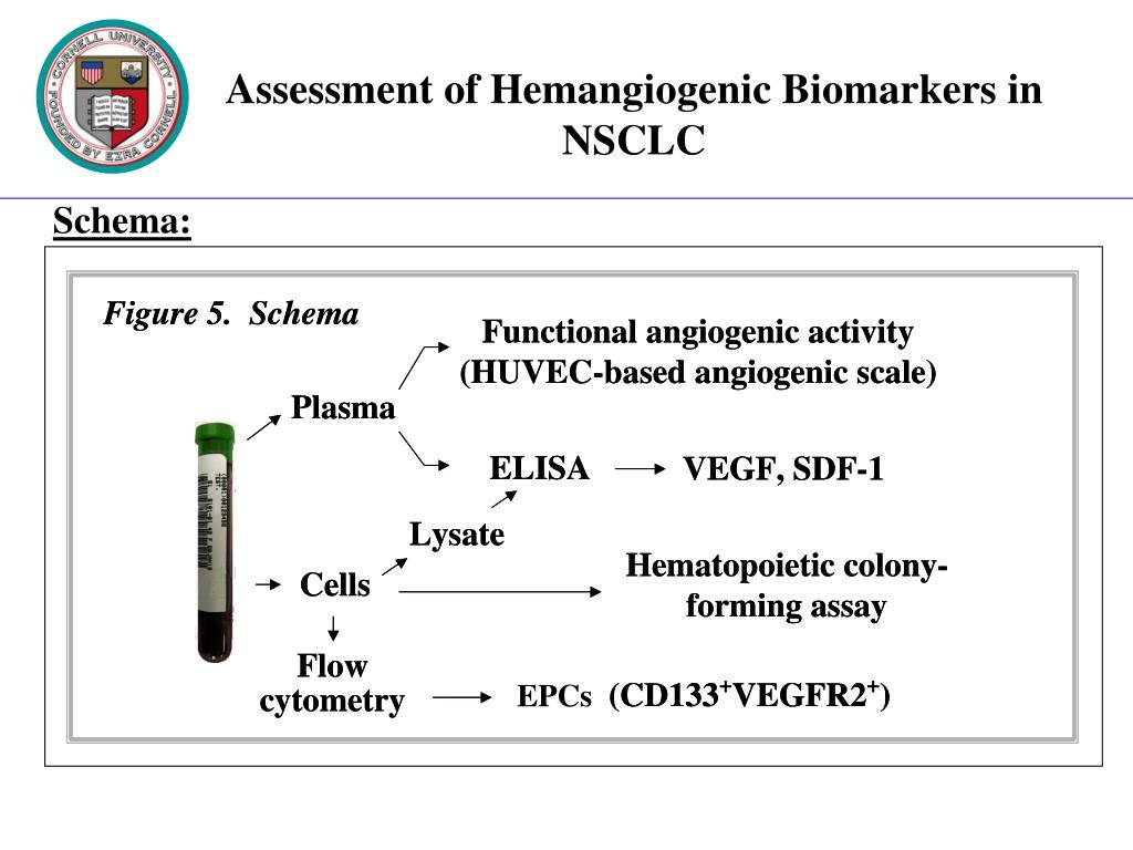 Assessment of Hemangiogenic Biomarkers in NSCLC
