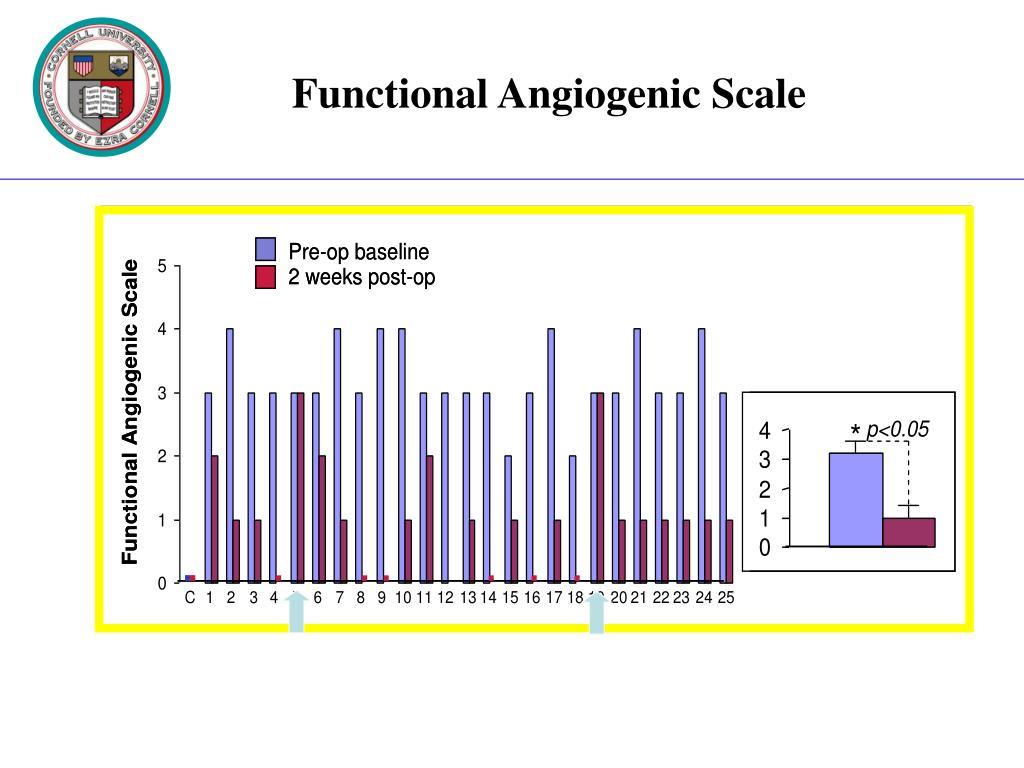 Functional Angiogenic Scale