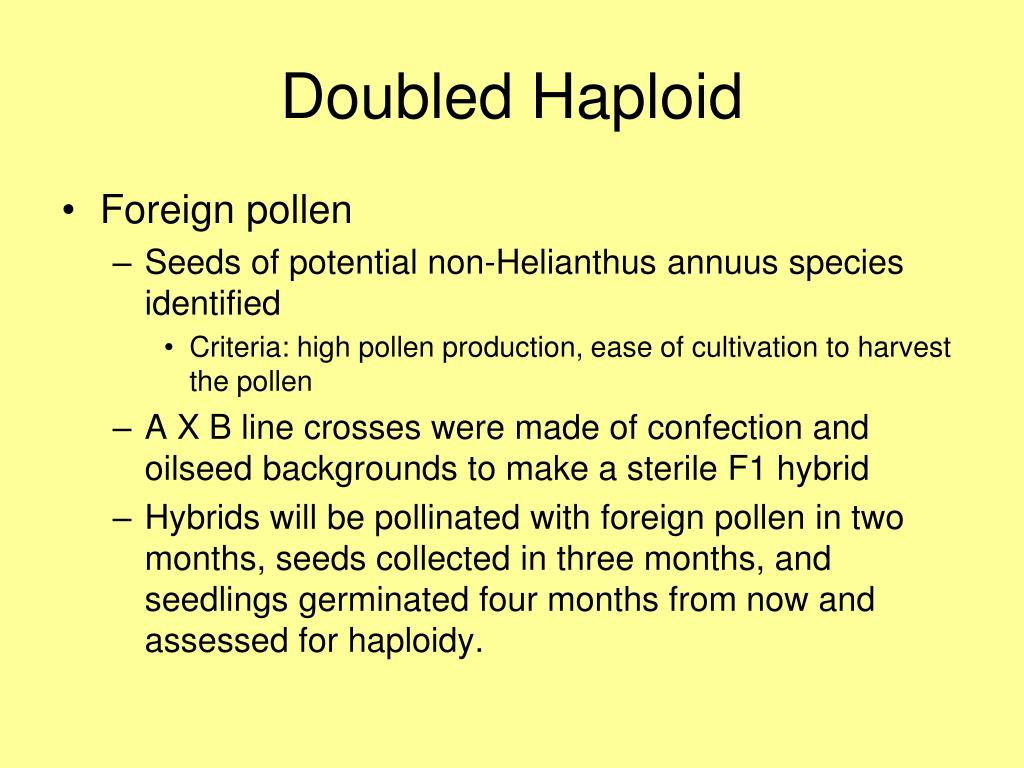 Doubled Haploid