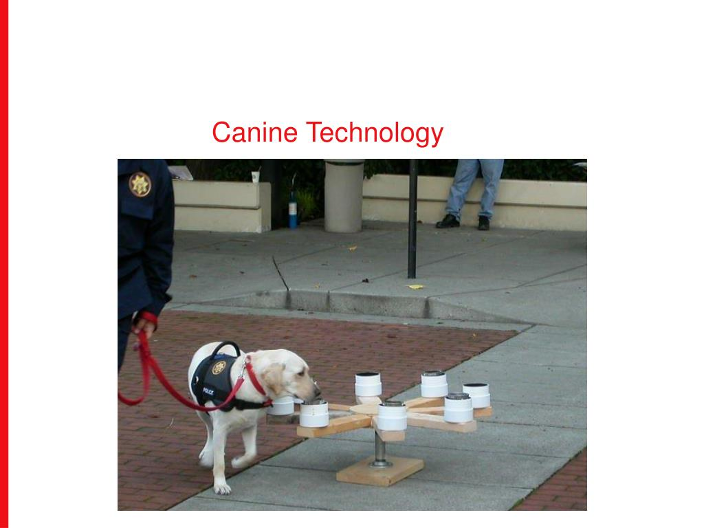 Canine Technology