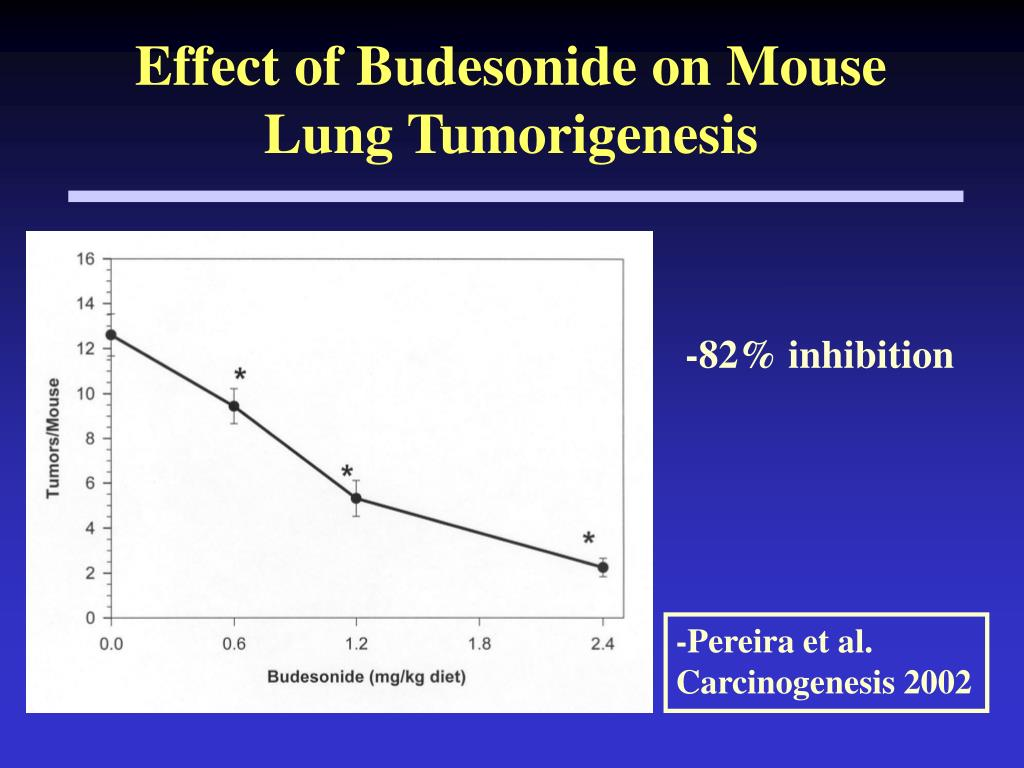 Effect of Budesonide on Mouse Lung Tumorigenesis