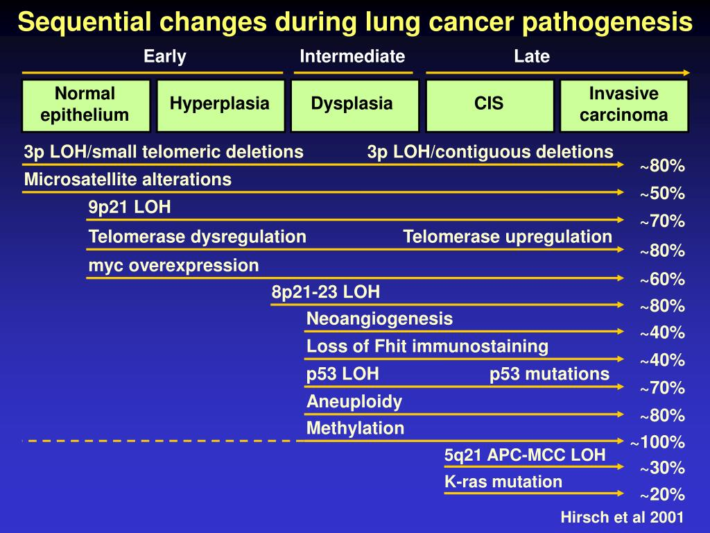 Sequential changes during lung cancer pathogenesis