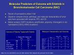 molecular predictors of outcome with erlotinib in bronchioloalveolar cell carcinoma bac