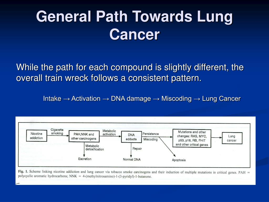 General Path Towards Lung Cancer