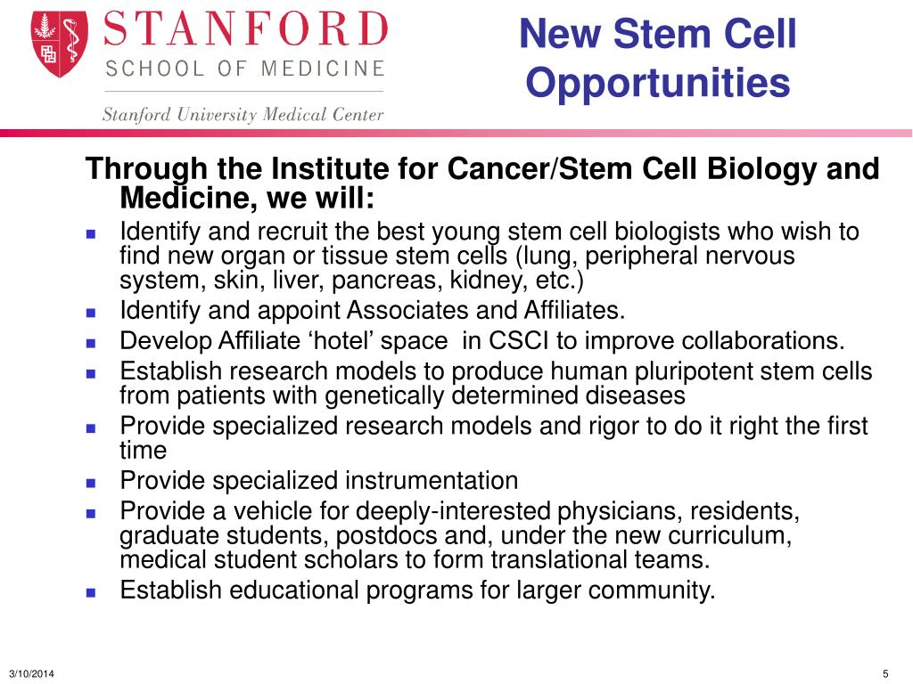 New Stem Cell Opportunities