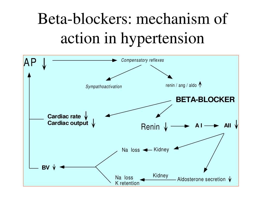 Beta-blockers: mechanism of action in hypertension