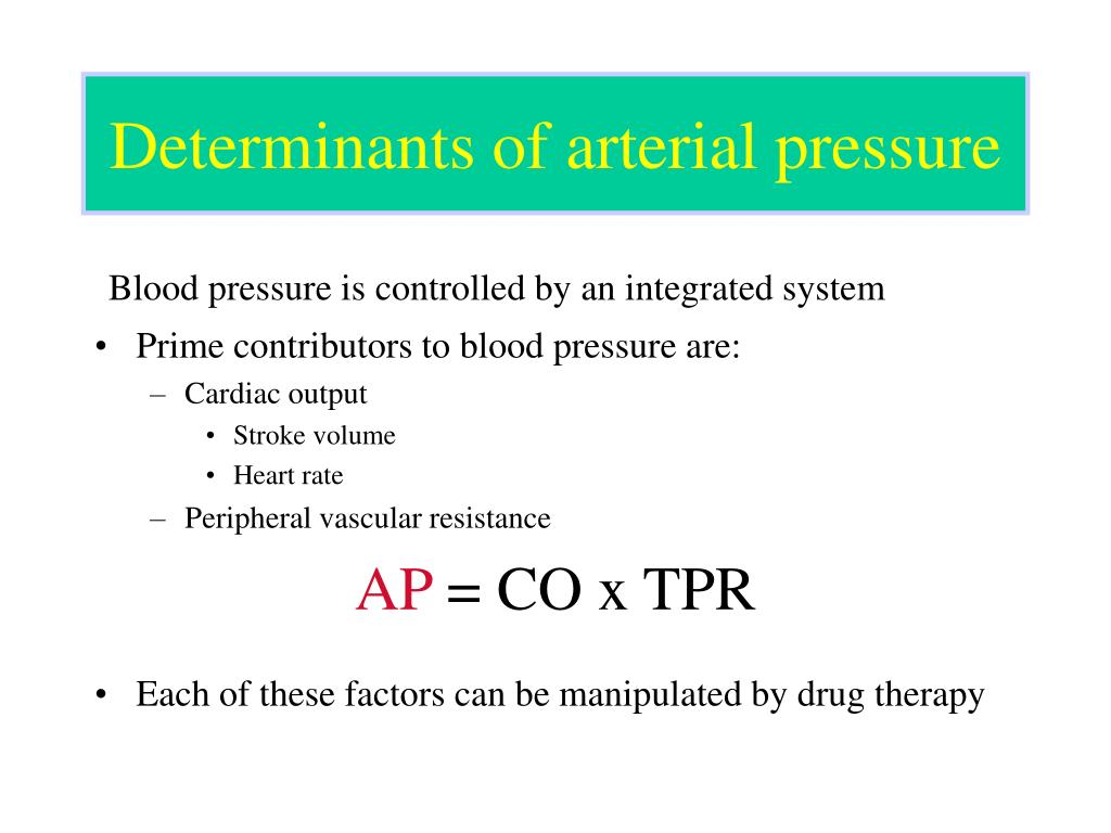 Determinants of arterial pressure