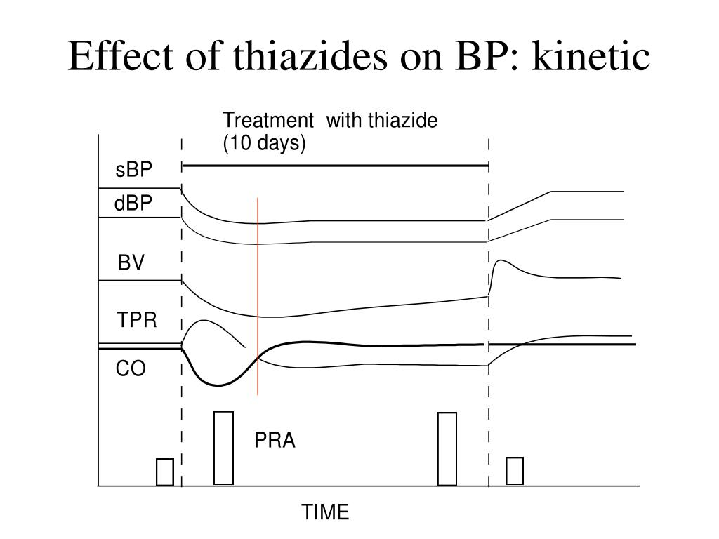 Effect of thiazides on BP: kinetic