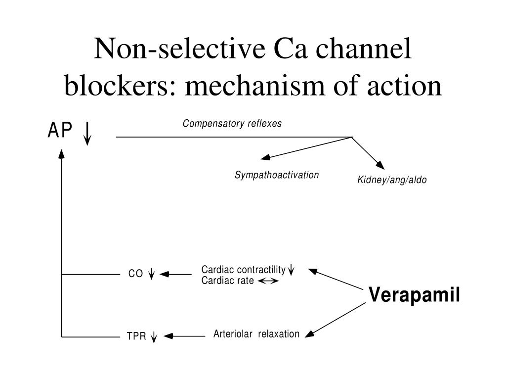 Non-selective Ca channel blockers: mechanism of action