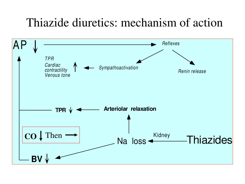 Thiazide diuretics: mechanism of action