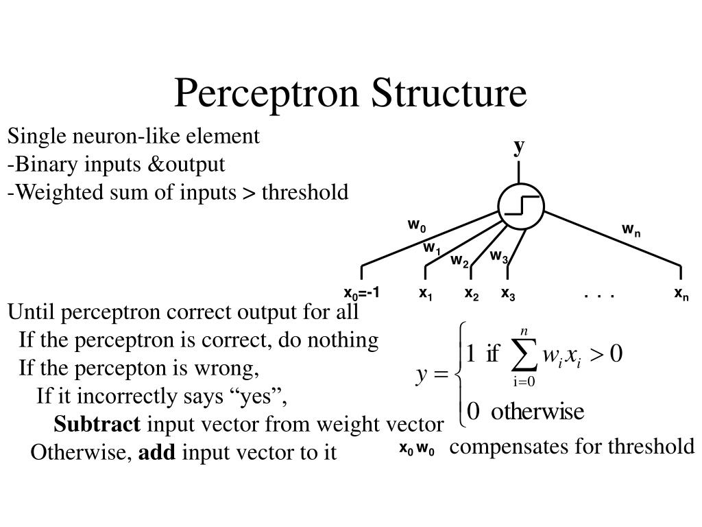 Perceptron Structure
