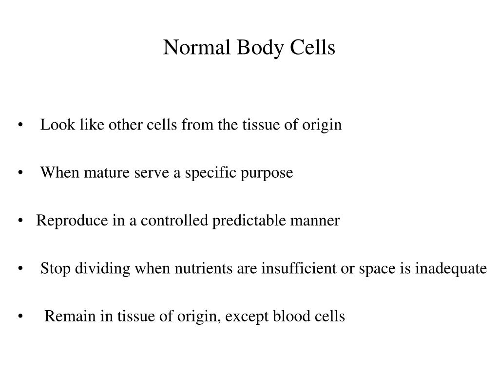 Normal Body Cells