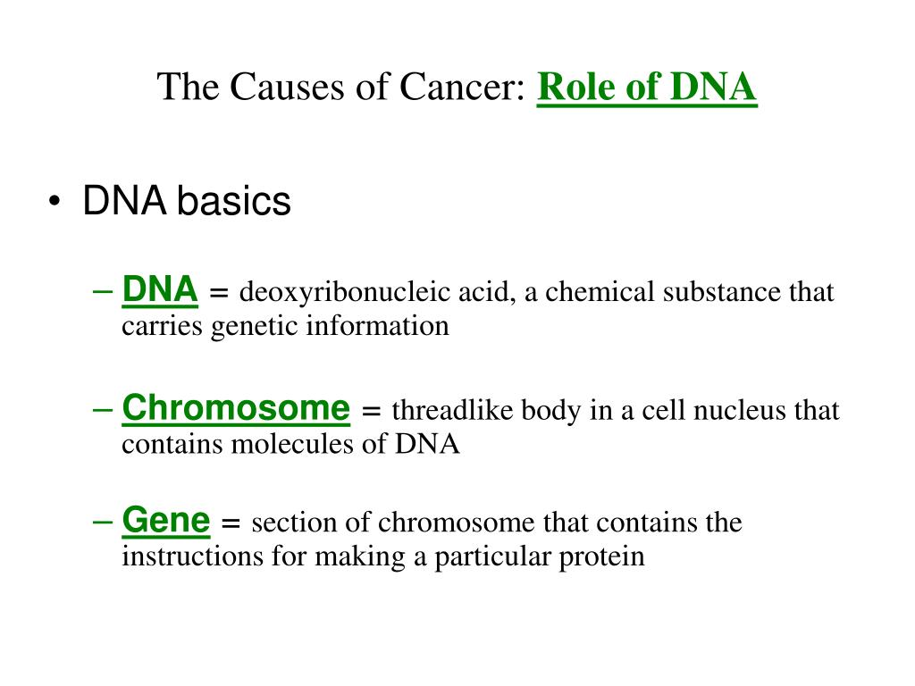 The Causes of Cancer: