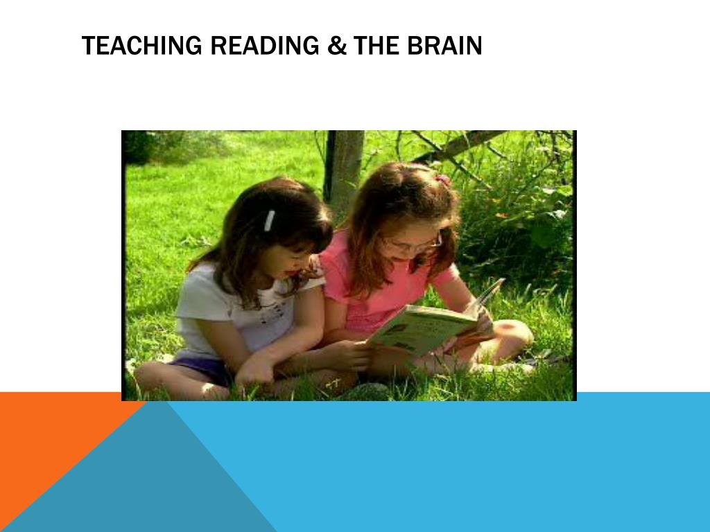 Teaching Reading & The Brain