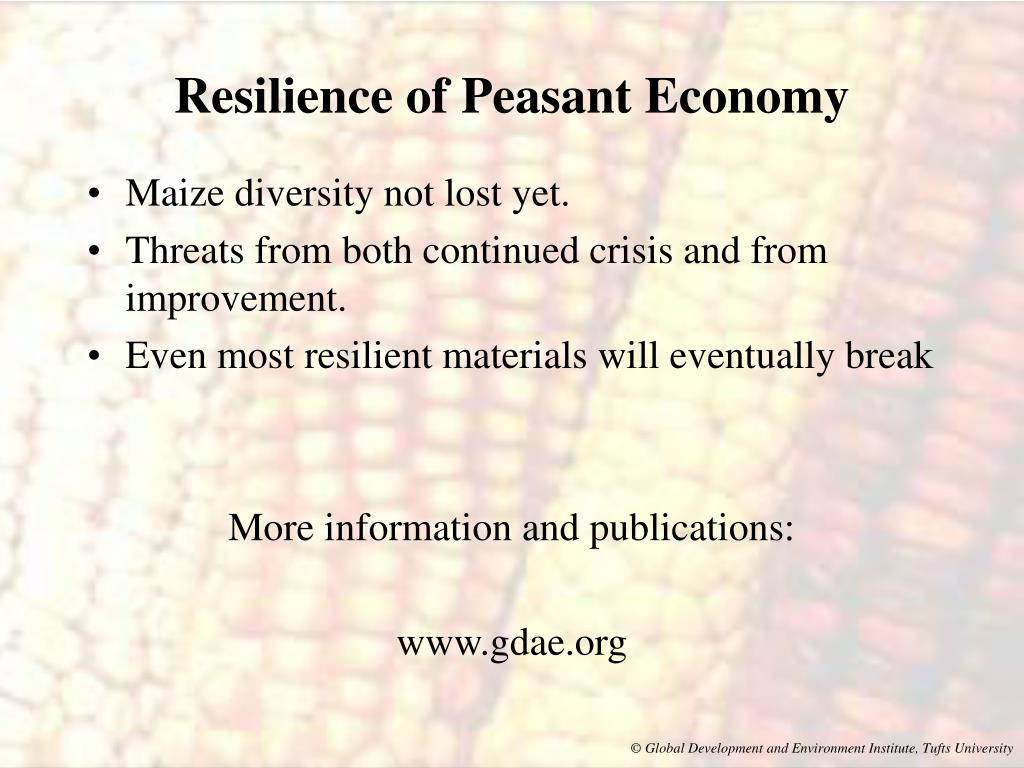 Resilience of Peasant Economy