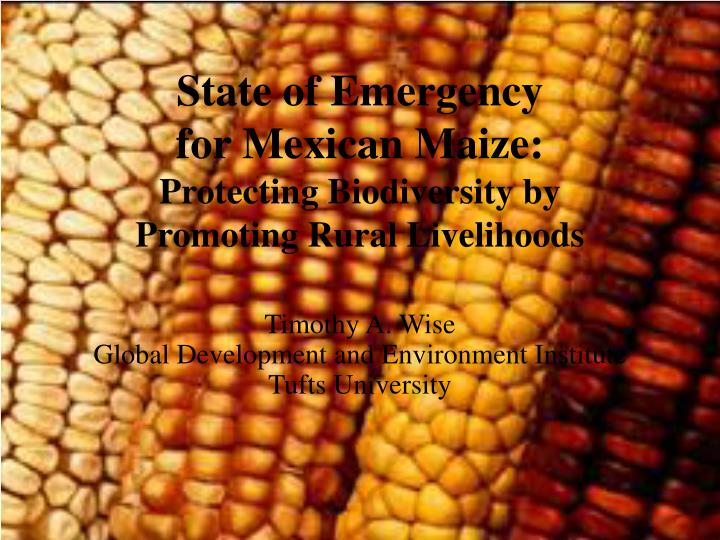 State of emergency for mexican maize protecting biodiversity by promoting rural livelihoods