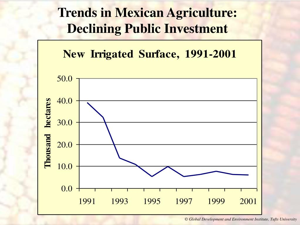 Trends in Mexican Agriculture: