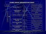 cosmo group organization chart