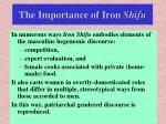 the importance of iron shifu