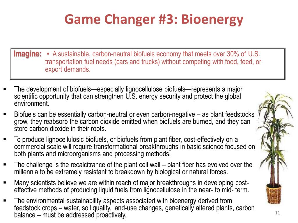 Game Changer #3: Bioenergy