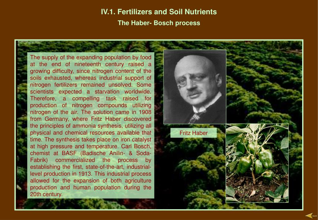 IV.1. Fertilizers and Soil Nutrients
