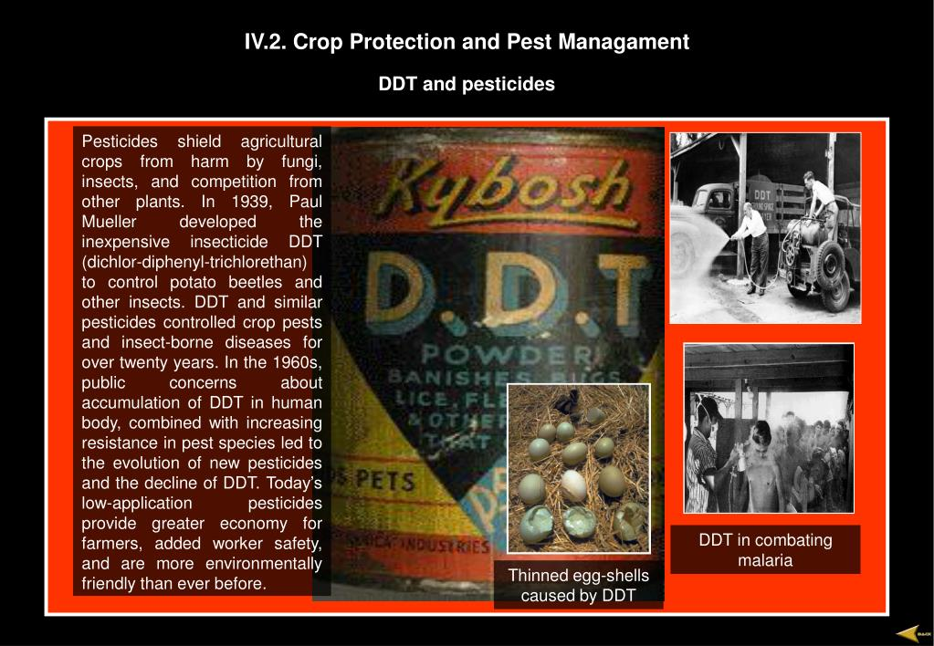IV.2. Crop Protection and Pest Managament