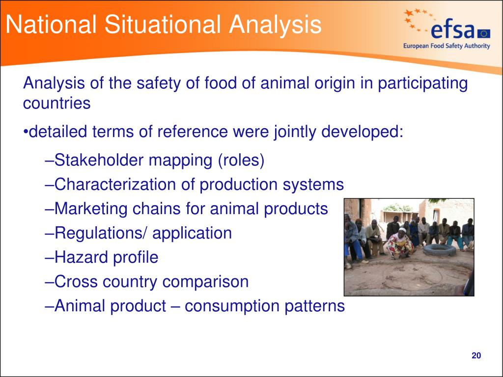 National Situational Analysis
