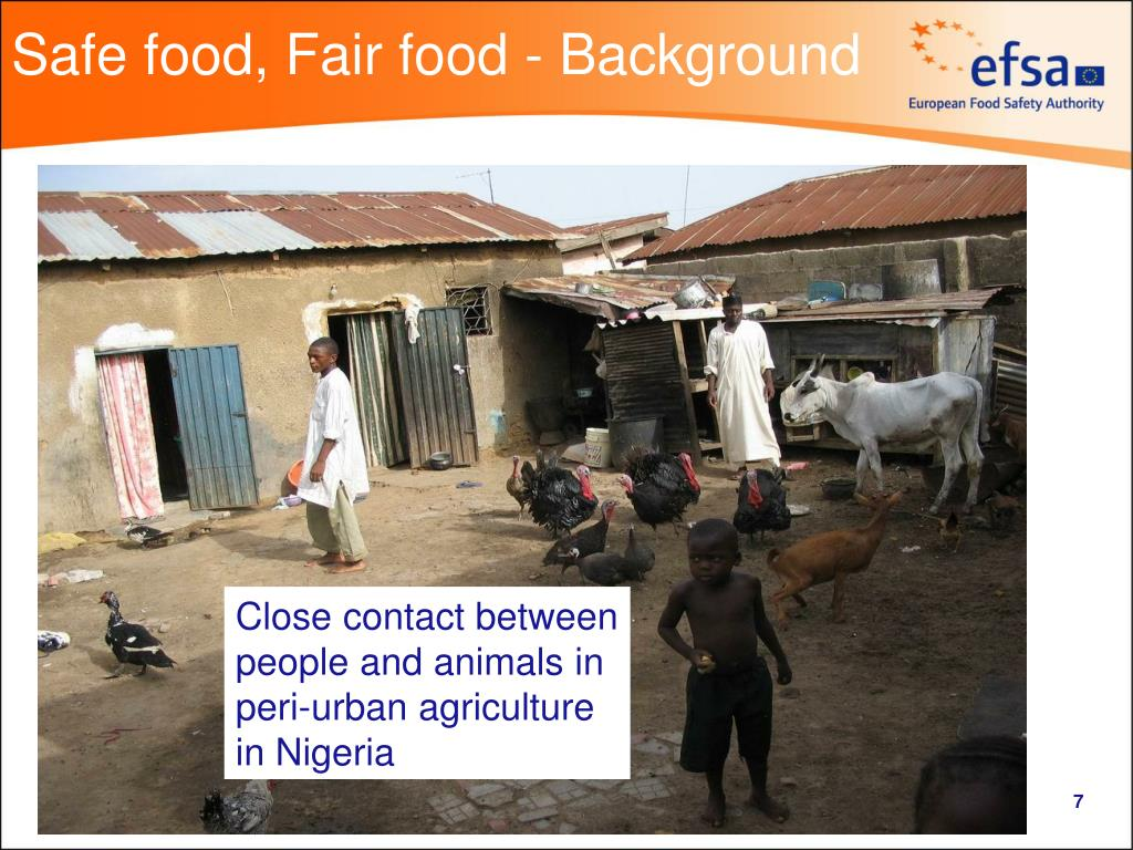 Safe food, Fair food - Background