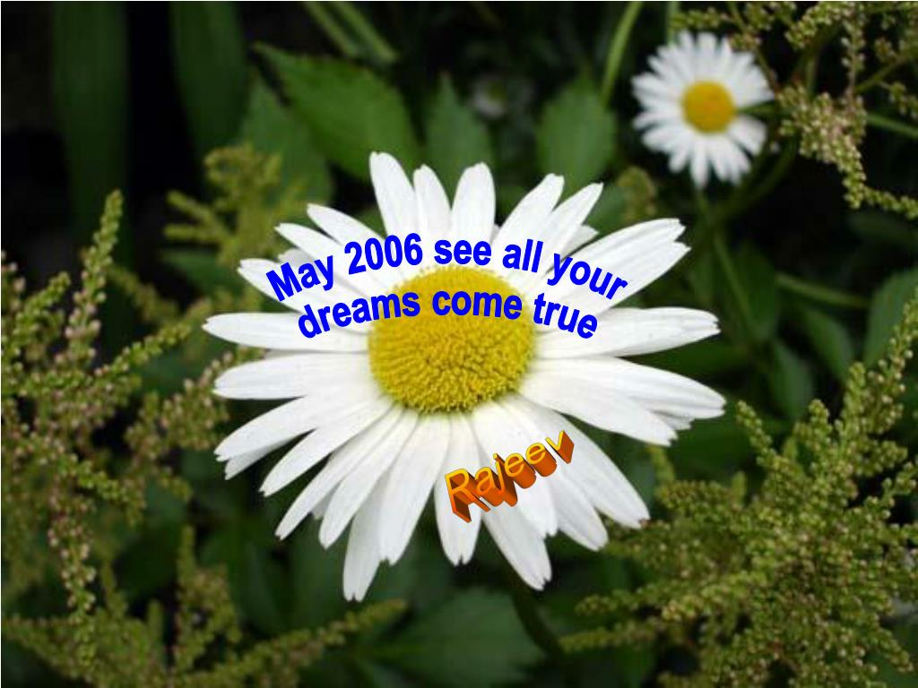 May 2006 see all your