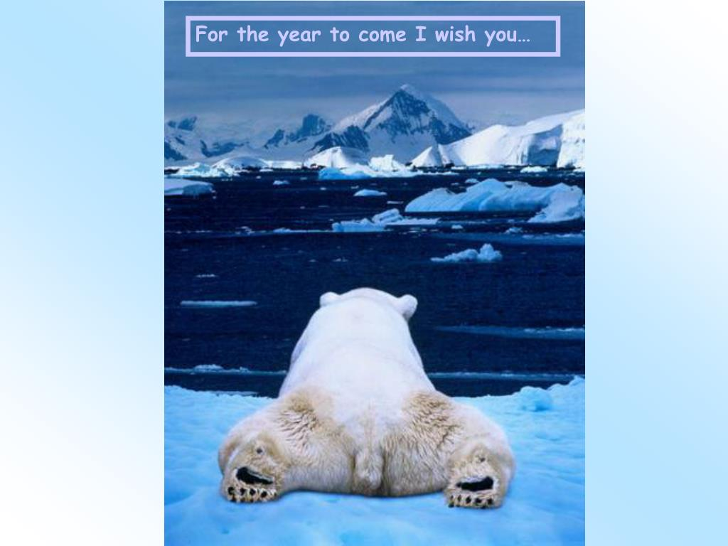For the year to come I wish you…