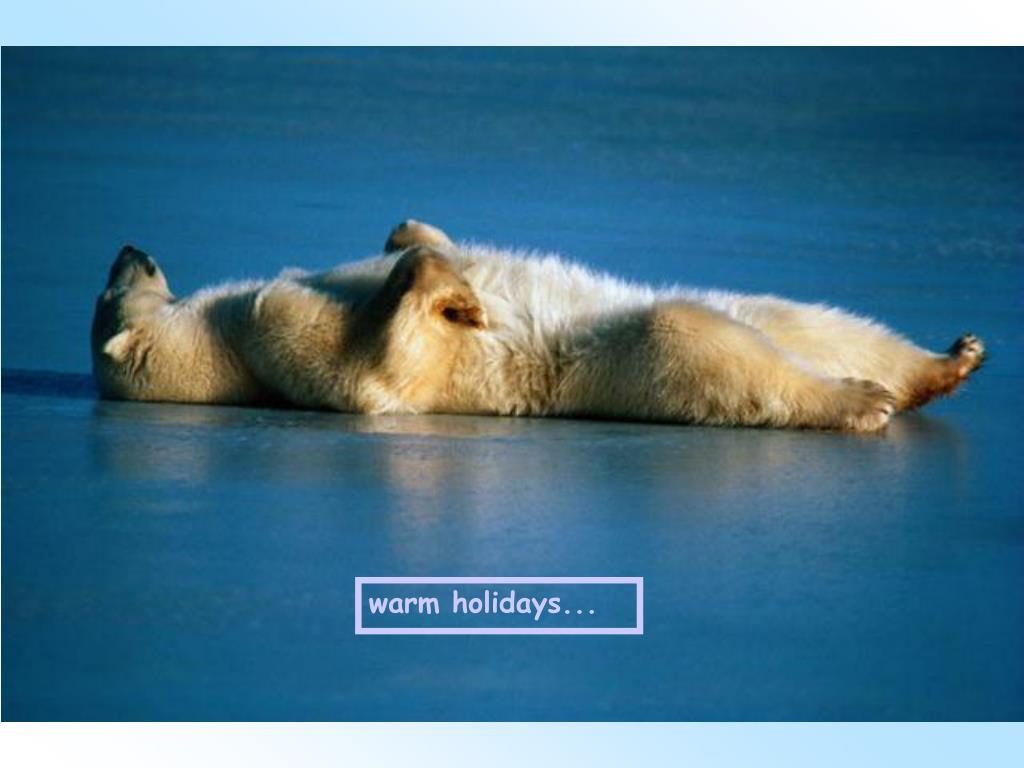 warm holidays...