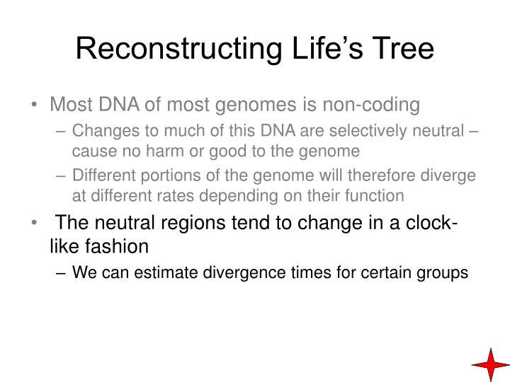 Reconstructing Life's Tree