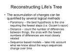 reconstructing life s tree6