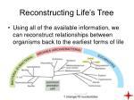 reconstructing life s tree9