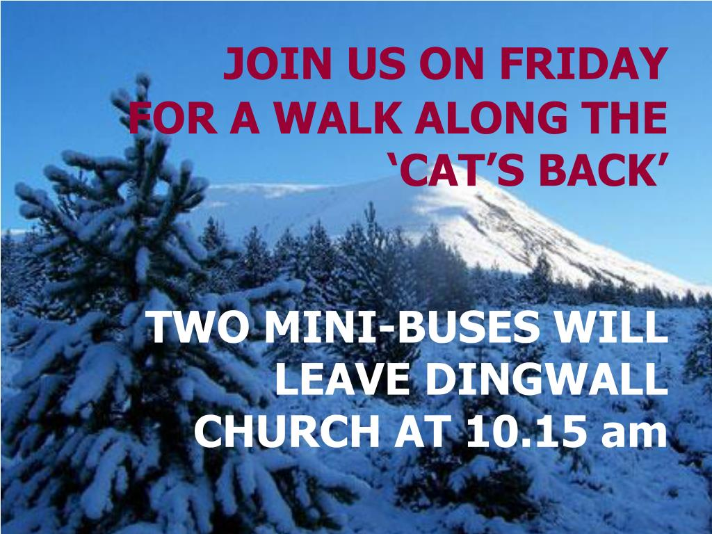 JOIN US ON FRIDAY FOR A WALK ALONG THE 'CAT'S BACK'