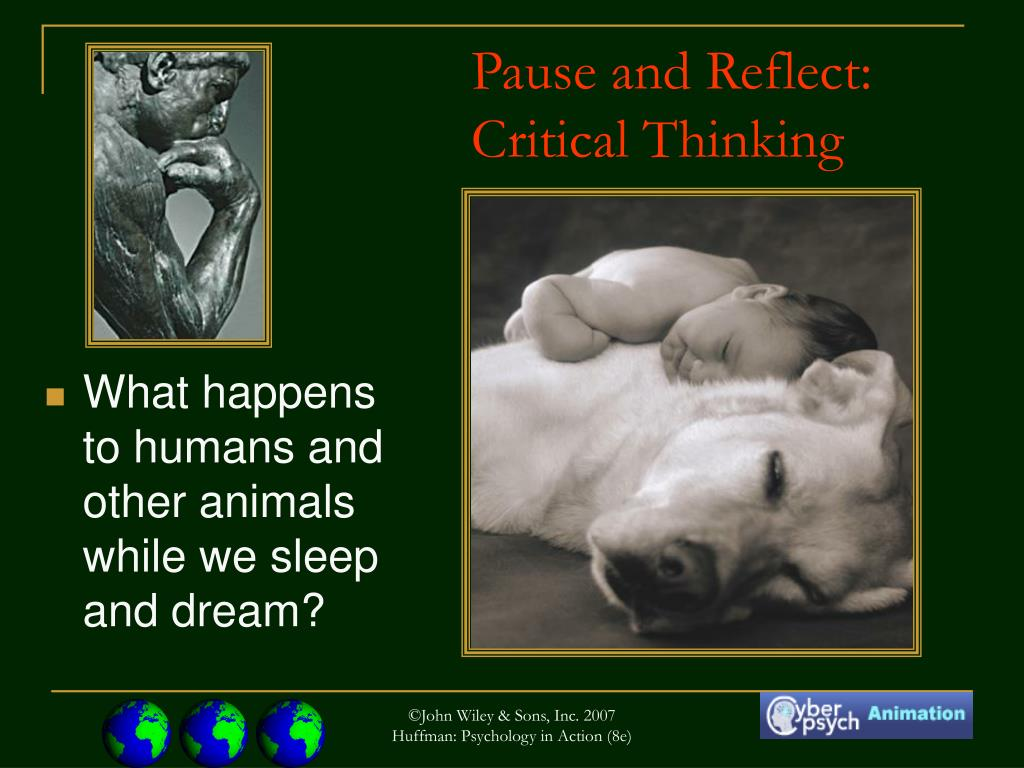 What happens to humans and other animals while we sleep and dream?