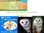 owls in the family by johnny melstrom