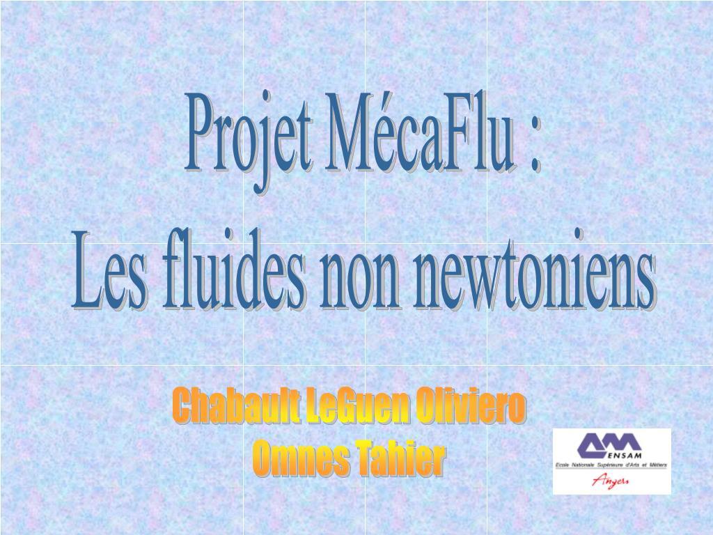 Projet MécaFlu :