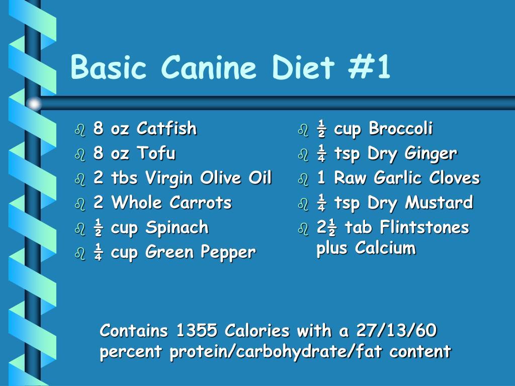 Basic Canine Diet #1