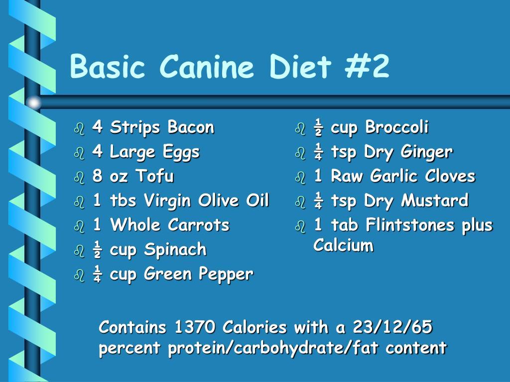 Basic Canine Diet #2
