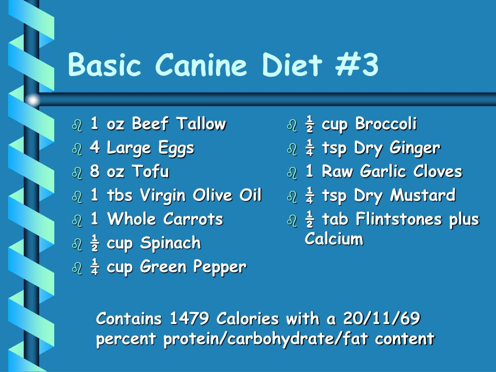 Basic Canine Diet #3