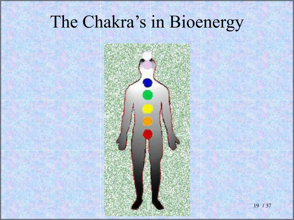 The Chakra's in Bioenergy