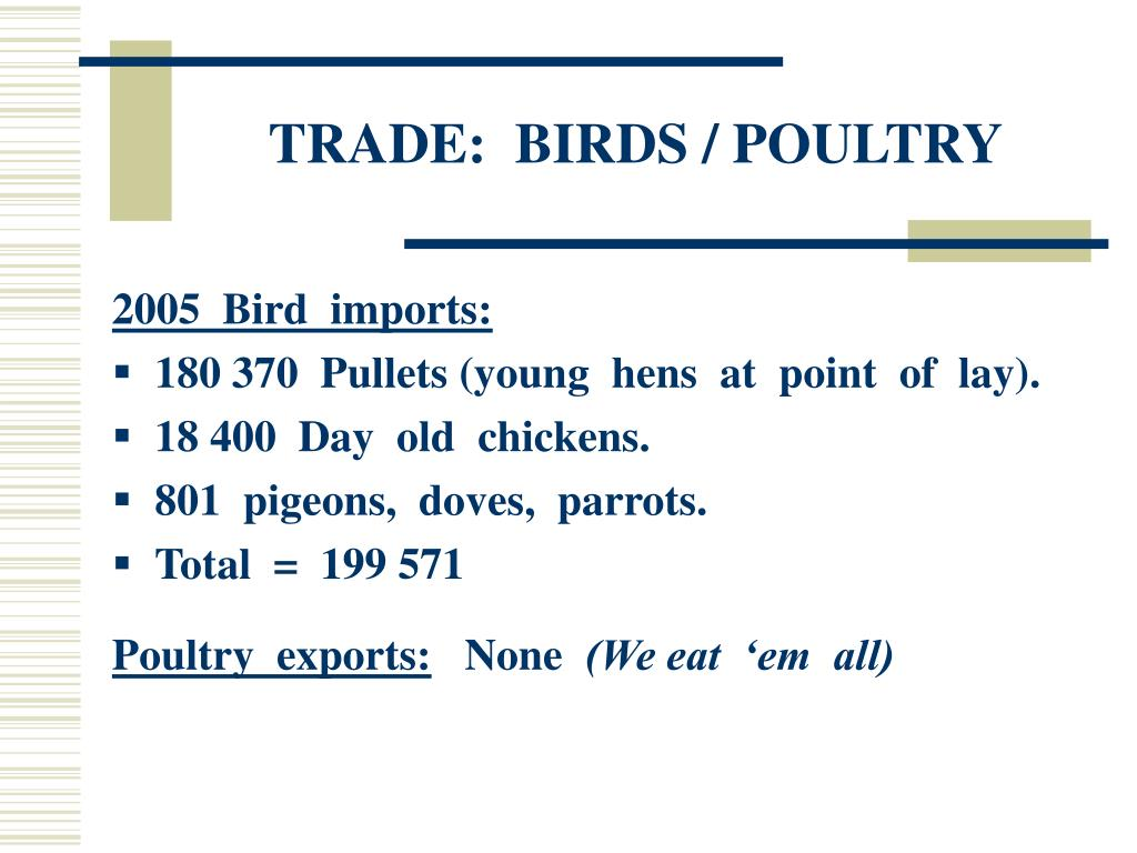 TRADE:  BIRDS / POULTRY