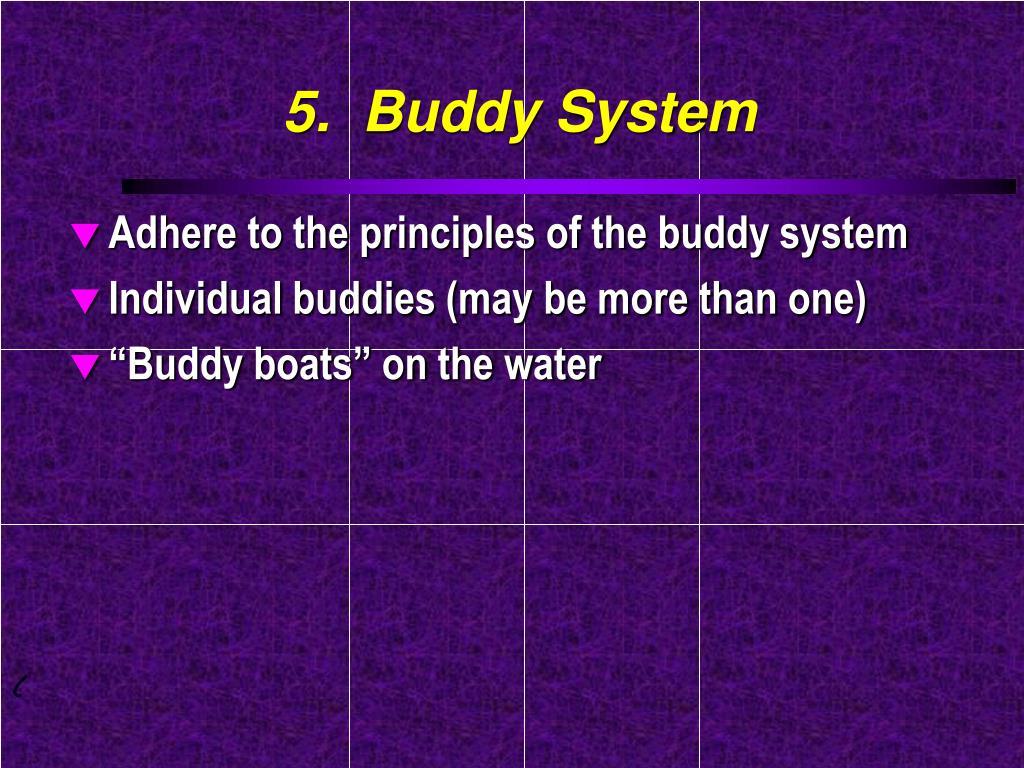5.  Buddy System