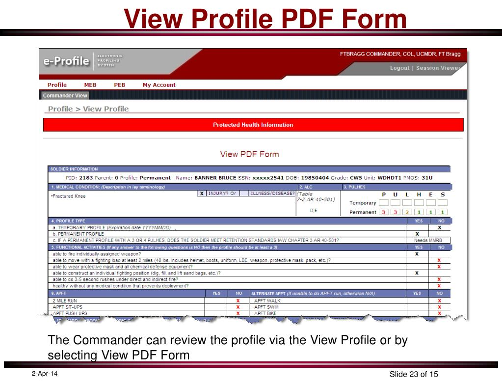 View Profile PDF Form